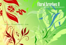 free_design_floral_brushes_II