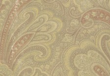 free_paisley_texture_14