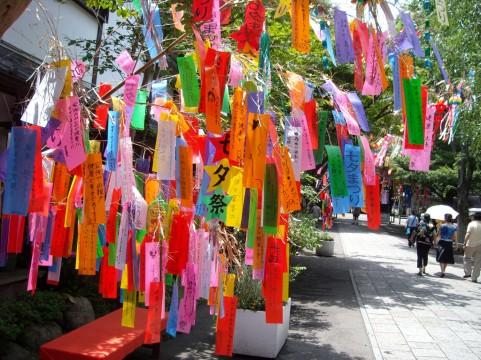 お願いごとの短冊をたくさん飾った七夕祭りの写真素材