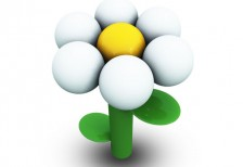 free-icon-white-daisy-archigraphs