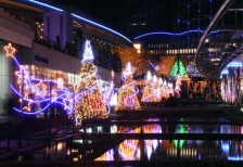 free-photo-christmas-illumination-korakuen