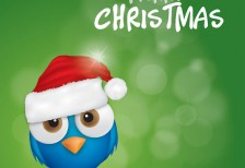 free-vector-illustration-merry-christmas-bird