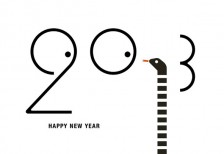 new-year-card-2013-face-snake
