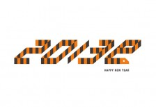 new-year-card-2013-snake-stripe