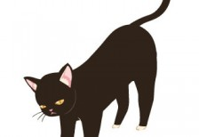 free-illustration-cute-black-cat