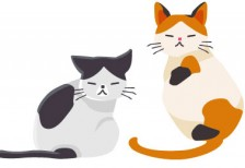 free-illustration-cute-two-cats