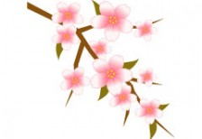 free-illustration-icon-sakura-set