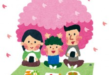 free-illustration-hanami-family