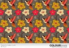 free-illustration-pattern-colibri-clad