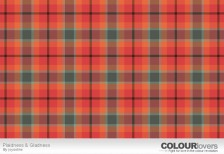 free-pattern-plaidness-gladness