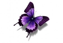 free-illustration-butterfly-dunedhel