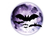 free-illlustration-icon-halloween-bats-moon