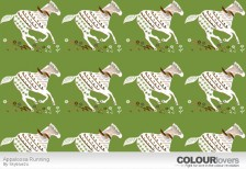 free-pattern-appaloosa-running-colourlovers