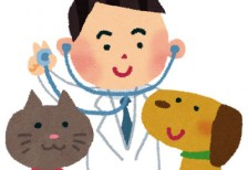 free-illustration-pet-doctor-irasutoya
