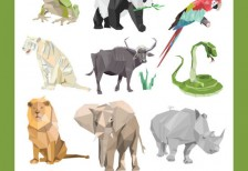 free-vector-animals-noupe