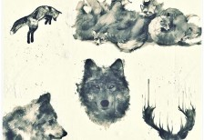 free-brushes-watercolor-animals-myphotoshopbrushes