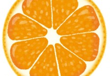 free-illustration-cut-fruit-orange-irasutoya
