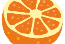 free-illustration-fruit-cut-orange-irasutoya