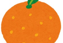 free-illustration-fruit-orange-irasutoya
