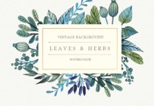 free-vector-watercolor-leaves-herbs-background